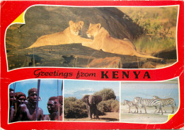 Multiview, Kenya Postcard Unposted - Kenya
