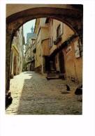Cpm - Alsace - RIQUEWIHR - La Rue Des Juifs - Chat Dans La Rue - 3 Chats - Katten