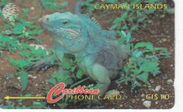 ILES CAYMAN Lot1 - Iles Cayman
