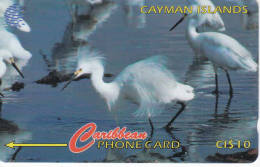 ILES CAYMAN Lot2 - Iles Cayman