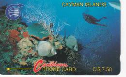 ILES CAYMAN Lot4 - Iles Cayman