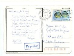 BAHAMAS 40c. Sur Carte Postée à Bord D'un Paquebot Oblitéré Au Cap Nord - Bahamas (1973-...)