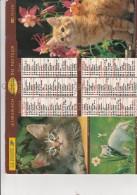 CALENDRIER LA POSTE . 2000 - Grand Format : 1991-00