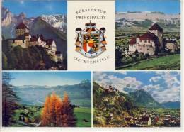 LIECHTENSTEIN - Schloß Vaduz, Falknis, Rheintal, Generalansicht - Liechtenstein