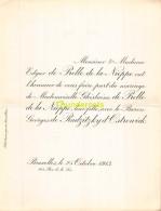 EDGARD DE PRELLE DE LA NIEPPE GHILAINE GEORGES DE RADZITZKY D OSTROWICK BRUXELLES 1913 - Mariage