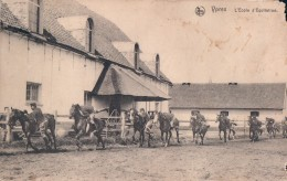 Ieper Ypres L'Ecole D'Equitation (paard Cheval ) - Ieper