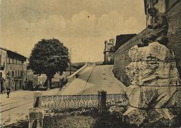 Camerino (Macerata) Monumento A Vitalini VG 1953 - Italia