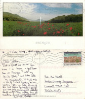 Egiali Fields, Amorgos, Greece Postcard Posted 2001 Stamp - Greece