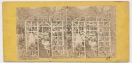 Photo Stéréoscopique (51) 7,5x7cm Carton Fort 17,5x8,2 Cm Réunion Sous La Tonnelle  Dégustation De Vin (?) - Stereoscopio