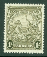 Barbados: 1938/47   Badge Of Colony    SG255a    1/-  Deep Brown-olive      MH - Barbados (...-1966)