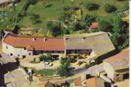 """CHASSELAS - Berceau Du Raisin Célèbre - La Cave Du  """"CHAR à BOEUF"""" (EA-d 312) Neuve - Otros Municipios"""
