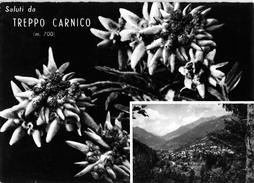 SALUTI DA TREPPO CARNICO (UD)  - VEDUTINE - F/G - V: 1950 - Udine