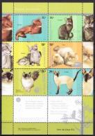 Argentina 2005 Yvert 2532- 37, Fauna, Cats - MNH - Argentinien