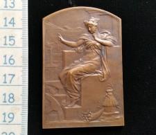Medaille Bronze Comité Francais Des Expositions A L'étranger - Francia