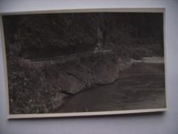 Nieuw Zeeland New Zealand Hawke's Crag Buller Gorge - Nieuw-Zeeland