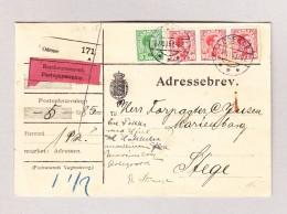 Dänemark Odense 27.10.1925 Rückerstatung Brief Nach Stege - 1913-47 (Christian X)