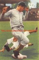 Hannie Urbanus, Honkbal - Baseball