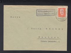 Dt. Reich Brief 1932 Landstempel Meusegast Heidenau - Briefe U. Dokumente
