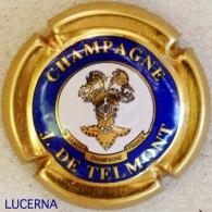 DE TELMONT N° 14 : Or, Bleu, Blanc, LETTRES EPAISSES - Champagne
