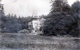 SINAIA - Castelul Pelisor, 5 Fach Frankiert, Händisch Entwertet - Rumänien