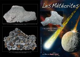 METEORITE DIFFERENCIEE Palasite Ureilite Howardite Achondrite Widmannstätten Enstatite Caille Juvinas Chassigny Alby - Meteorites