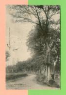 CPA  FRANCE  31  ~  AULON  ~  La Rouzigue, Promenade Publique  ( L. Bourdages 1909 )  Animée - France