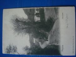 MEYSSE : Une Ruelle  En 1904 - Meise