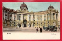 Wien I.  Hofburg. Résidence Du Président. Musée De Sissi. Passants Et Calèche.  Ca 1900 - Wien Mitte