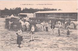 Carte Postale Ancienne - Militaires - Camp De Mailly - Le Pansage Des Chevaux - Barracks