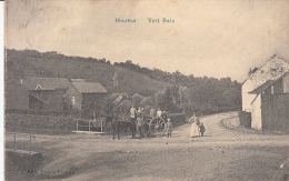 Housse - Vert Bois (belle Animation, Attelage, 1913, Edit. Fastré Fraikin) - Blégny