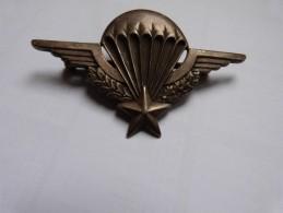 Insigne Brevet Parachutiste ANDOR LE CANNET - Patches