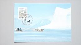 Grönland 199 Yt 187 Maximumkarte MK/CM, SST QASIGIANNGUIT 1990, Schneegans (Anser Caerulescens) - Maximumkaarten