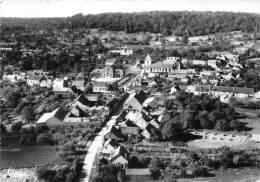 60 - OISE - Cpsm Cpm - Salency - Vue Du Ciel - Autres Communes