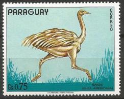 Paraguay - MNH ** - Greater Rhea (Rhea Americana )