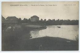 Chaugey-Bords De La Saône-La Carpe Dorée- (CPA) - Altri Comuni
