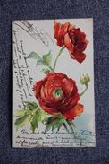 ROSES, Carte Gaufrée. - Fleurs