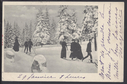 NORVEGE -  Carte Postale  De Christiana écrite En 1904 - Sport De Neige - ED. M.& Co. - Norvège
