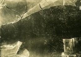 France WWI WW1 Vallee De Bois Ferme SPAD 2 Ancienne Photo Aerienne 1918 - Aviation