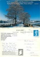 Navan Fort, Northern Ireland Postcard Posted 2006 Stamp - Irlande Du Nord