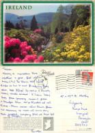 Rural Scene, Ireland Postcard Posted 1996 Stamp - Irlande
