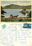 Jaunting Car,  Killarney,  Co Kerry, Ireland Postcard Posted 1965 Stamp - Kerry
