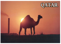 (219) Qatar - Camel & Petrol - Qatar