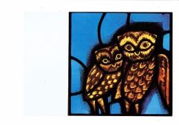 71 - TAIZE - église De La Réconciliation - Vitrail Des CHOUETTES - Oiseau Chouette - - Autres Communes