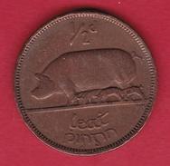 Irlande - 1/2 Penny 1933 - Ireland