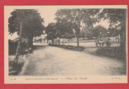 CPA: Saint Martin En Haut (69) Place Du Plomb - Francia