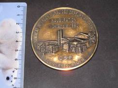 FRANCE- Une Medaille - Syndicat Intercommunal Des Sapeurs Pompiers Cagnes Sur Mer- Inauguration 1/12/1990  122gr - Brandweer
