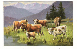 VACHES + TAUREAU + VEAU  ( Illustrateur  :  Angel  MÜLLER , München ) / Edit. H.K.C.M. , Série N° 228 ( Cpa Précurseur ) - Vaches