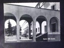 VENETO -TREVISO -ODERZO -F.G. - Treviso