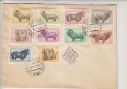 MONGOLIA: Complete Set Of Animal Issues Affixed To Cover. Cancelled By Favour. NOT Posatally Used. - Mongolei
