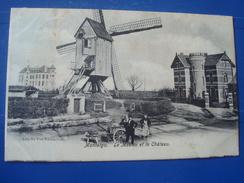 MONTAIGU : Le Moulin Et Le Château En 1906 - Scherpenheuvel-Zichem